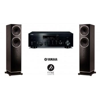 Stereo SET Yamaha R-N803D + FyneAudio F502